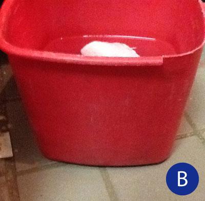 unlabeled sanitizer bucket