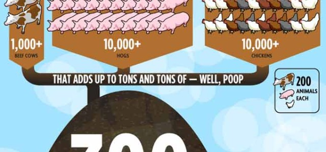 Is Factory Farming Making People Sick?